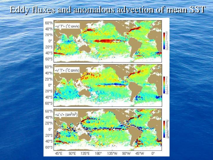 Eddy fluxes and anomalous advection of mean SST