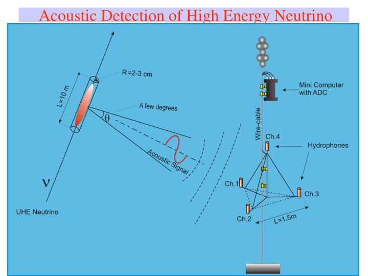 Acoustic Detection of High Energy Neutrino
