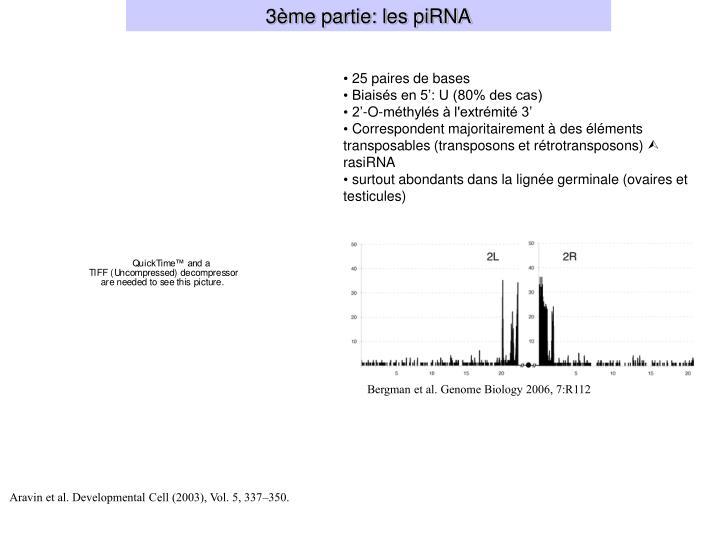 3ème partie: les piRNA