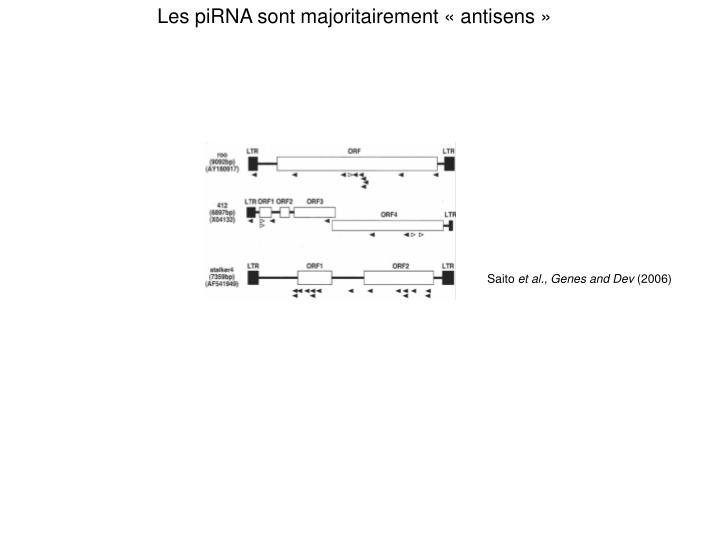 Les piRNA sont majoritairement «antisens»