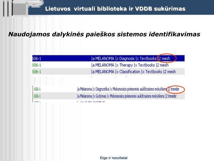 Naudojamos dalykinės paieškos sistemos identifikavimas