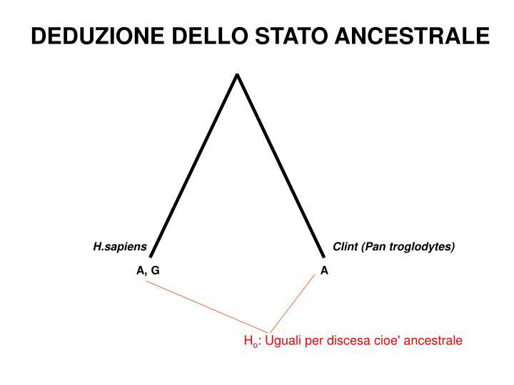 DEDUZIONE DELLO STATO ANCESTRALE