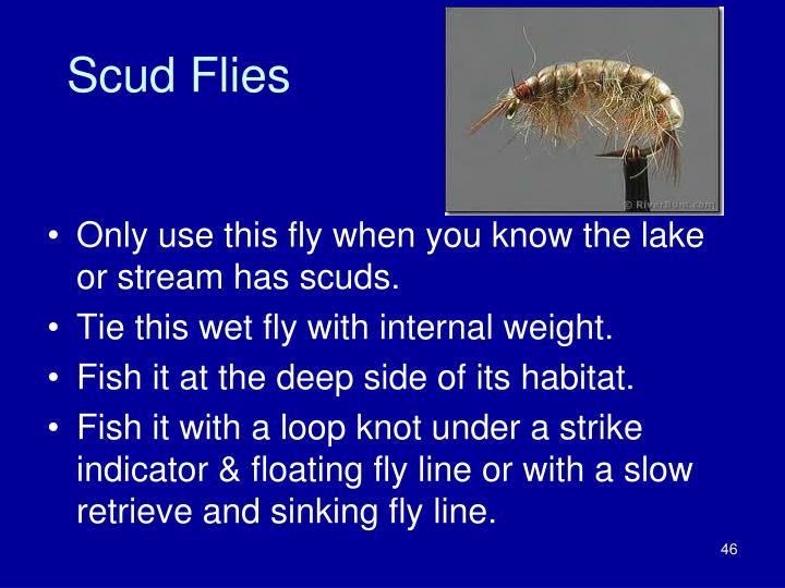 Scud Flies