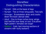 stoneflies distinguishing characteristics