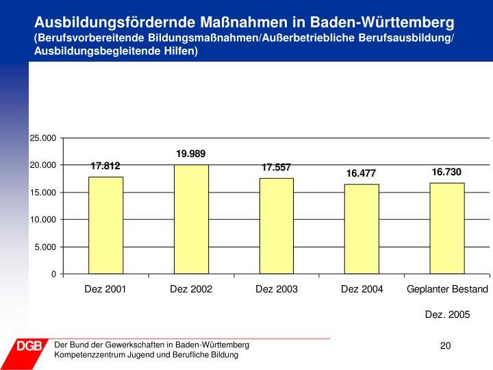 Ausbildungsfördernde Maßnahmen in Baden-Württemberg