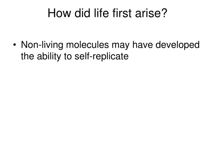 How did life first arise?