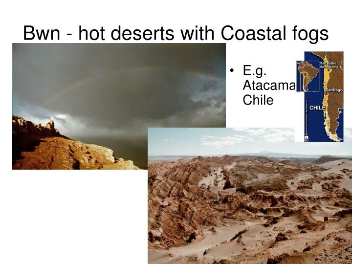 Bwn - hot deserts with Coastal fogs