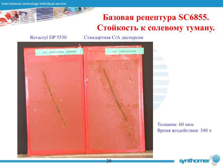 Базовая рецептура SC6855. Стойкость к солевому туману.