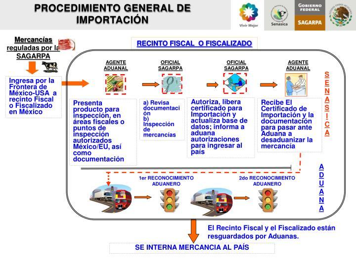 PROCEDIMIENTO GENERAL DE IMPORTACIÓN
