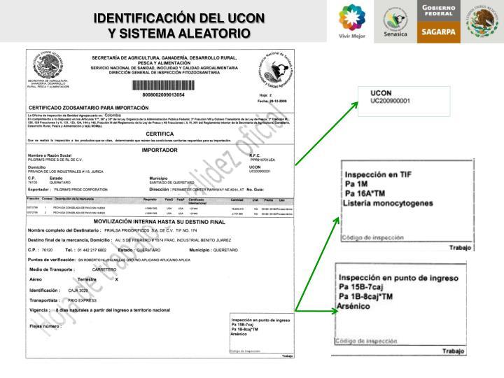 IDENTIFICACIÓN DEL UCON