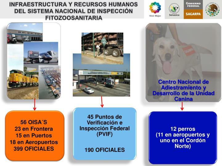 INFRAESTRUCTURA Y RECURSOS HUMANOS DEL SISTEMA NACIONAL DE INSPECCIÓN FITOZOOSANITARIA