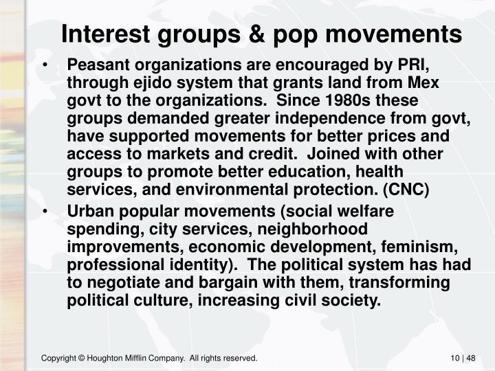 Interest groups & pop movements