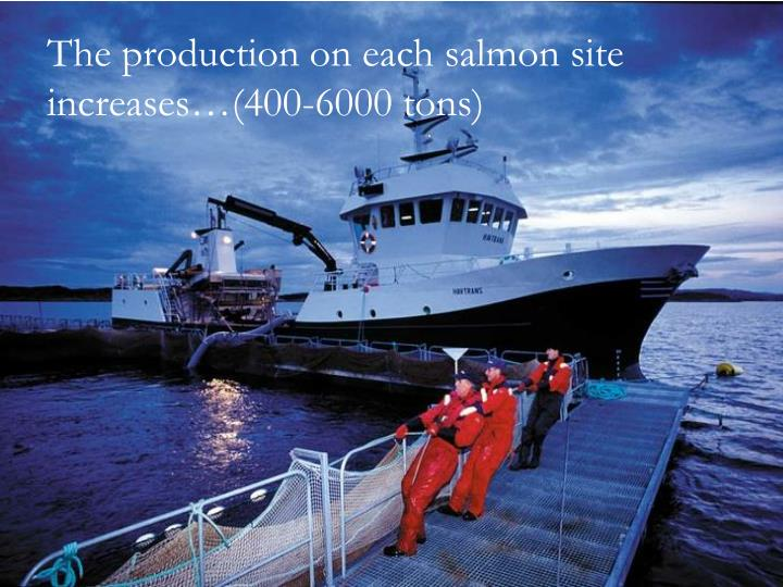 The production on each salmon site increases…(400-6000 tons)