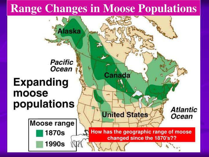 Range Changes in Moose Populations