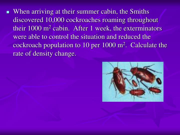 When arriving at their summer cabin, the Smiths discovered 10,000 cockroaches roaming throughout their 1000 m