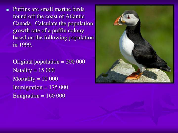 Puffins are small marine birds found off the coast of Atlantic Canada.  Calculate the population growth rate of a puffin colony based on the following population in 1999.