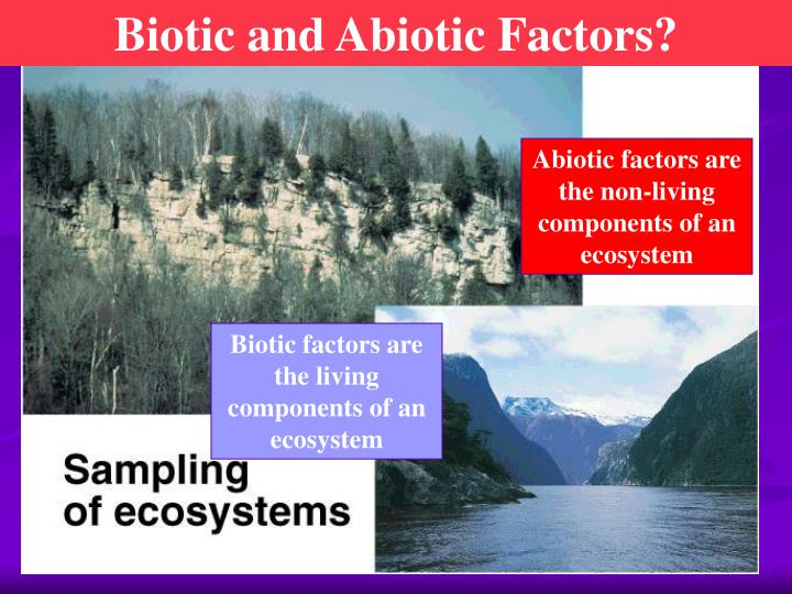 Biotic and Abiotic Factors?