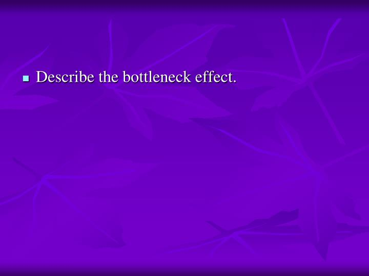 Describe the bottleneck effect.