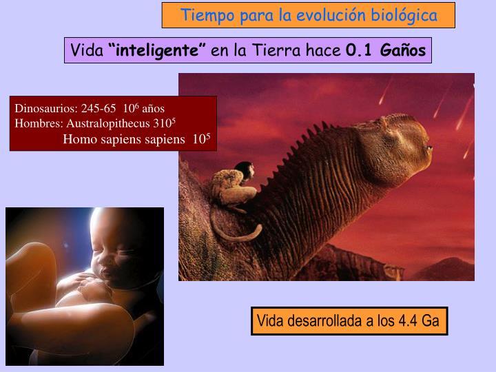 Tiempo para la evolución biológica