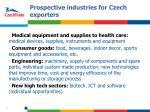 prospective industries for czech exporters1