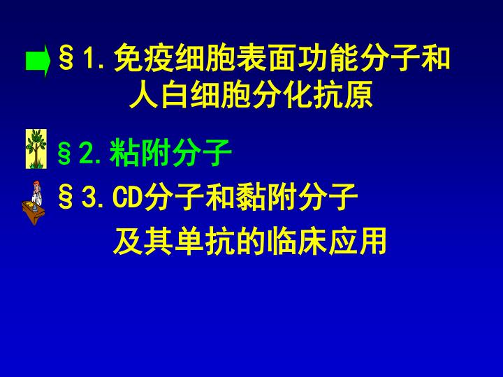 §1.免疫细胞表面功能分子和人白细胞分化抗原