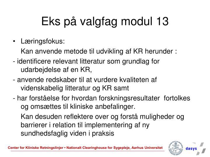 Eks på valgfag modul 13