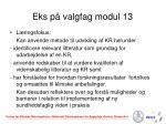 eks p valgfag modul 13