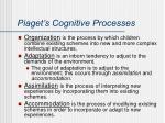 piaget s cognitive processes