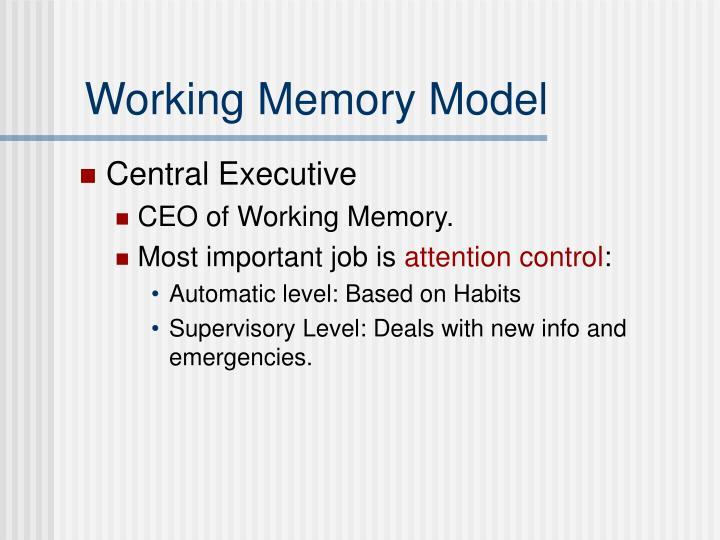 Working Memory Model