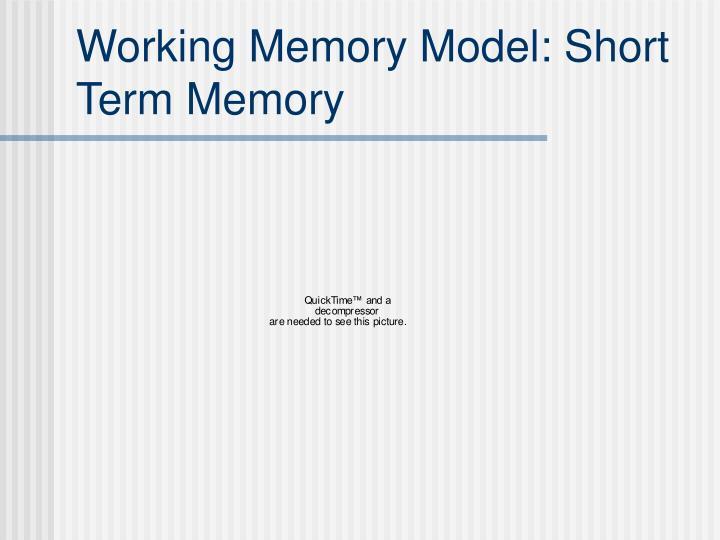 Working Memory Model: Short Term Memory