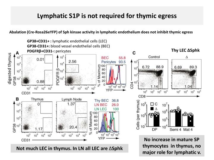 Lymphatic S1P is not required for