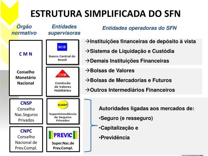 ESTRUTURA SIMPLIFICADA DO SFN