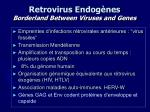 retrovirus endog nes borderland between viruses and genes