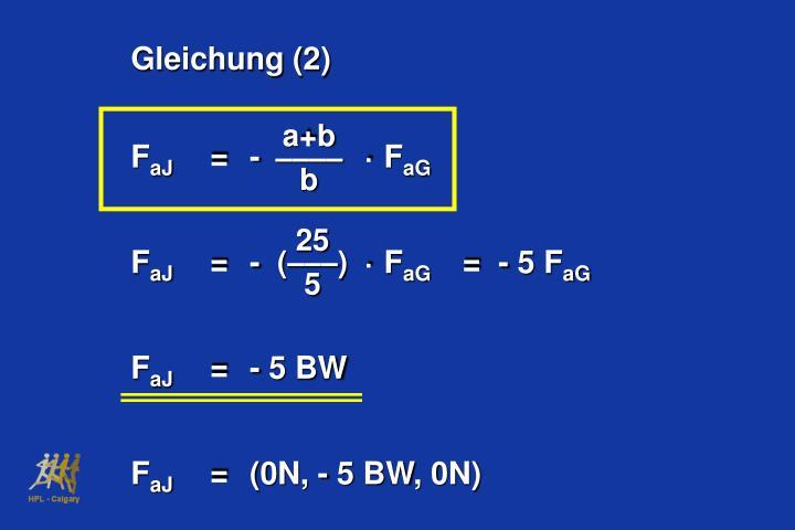Gleichung (2)