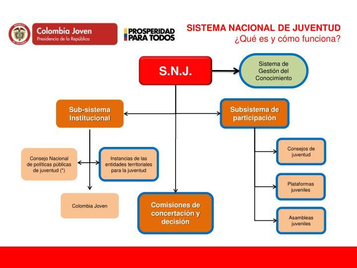 SISTEMA NACIONAL DE JUVENTUD