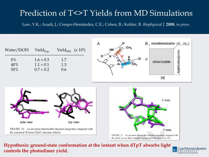 Prediction of T<>T Yields from MD Simulations