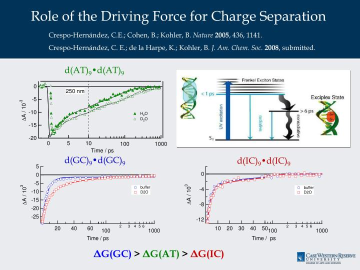 Role of the Driving Force for Charge Separation