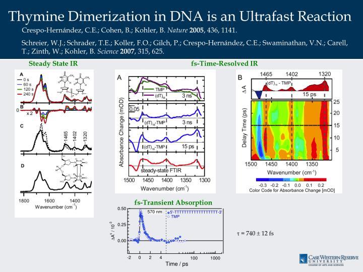 Thymine Dimerization in DNA is an Ultrafast Reaction