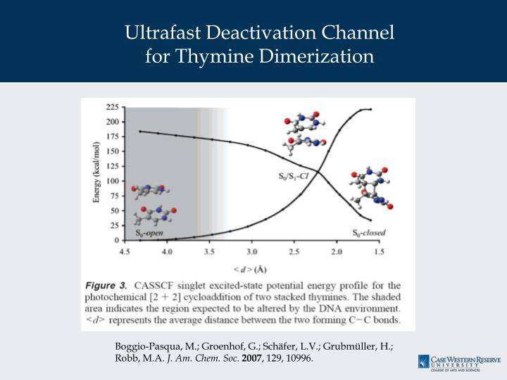 Ultrafast Deactivation Channel for Thymine Dimerization