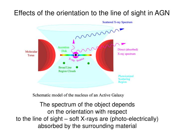 Effects of the orientation to the line of sight in AGN