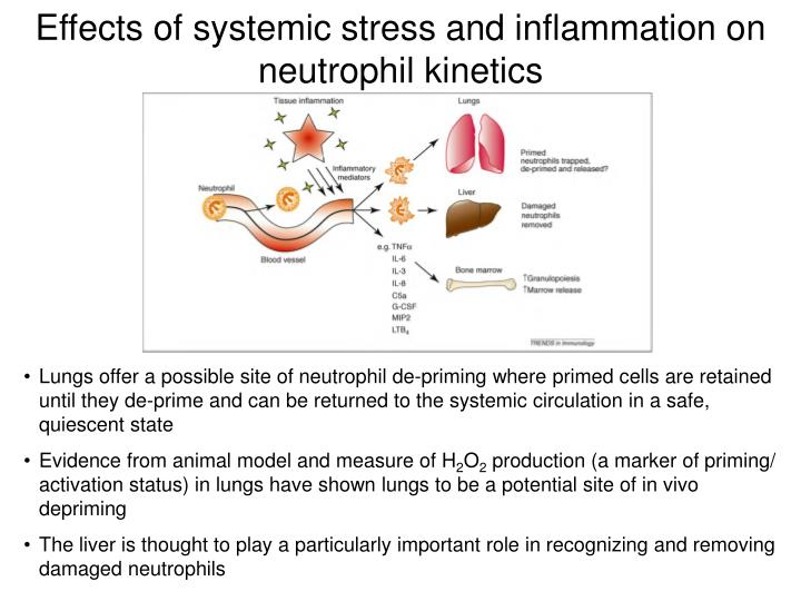 Effects of systemic stress and inflammation on