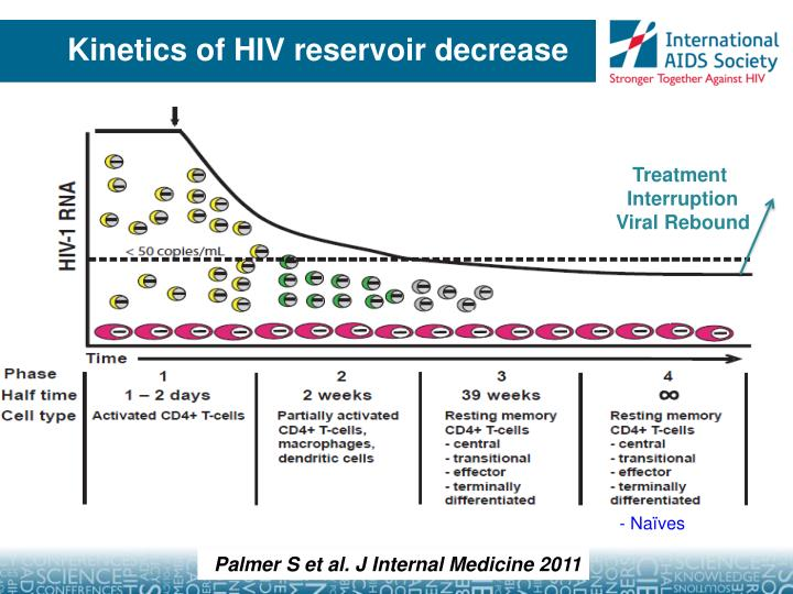 Kinetics of HIV reservoir decrease