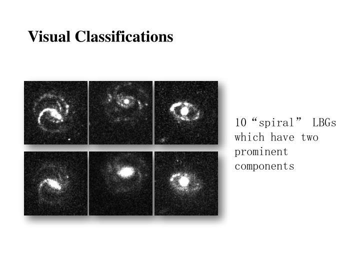 Visual Classifications