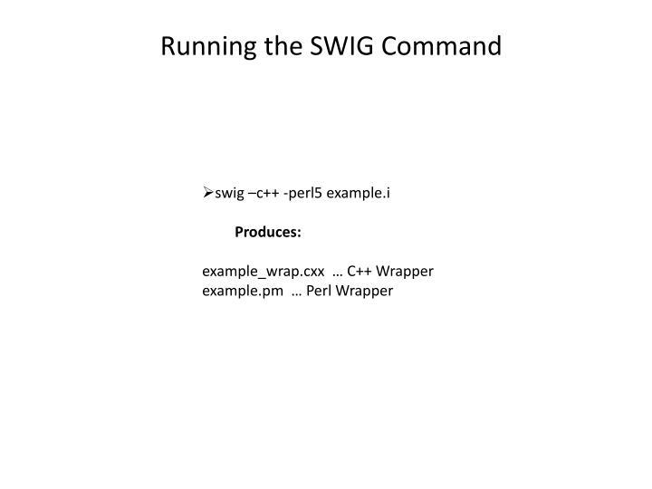 Running the SWIG Command
