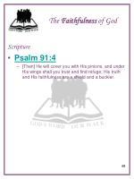 the faithfulness of god4