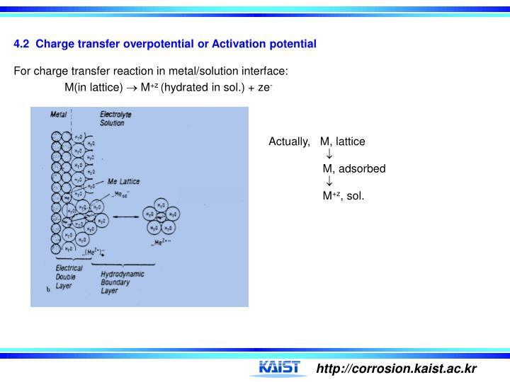 4.2  Charge transfer overpotential or Activation potential