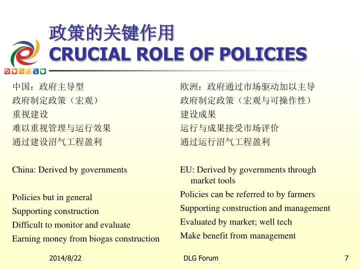 政策的关键作用