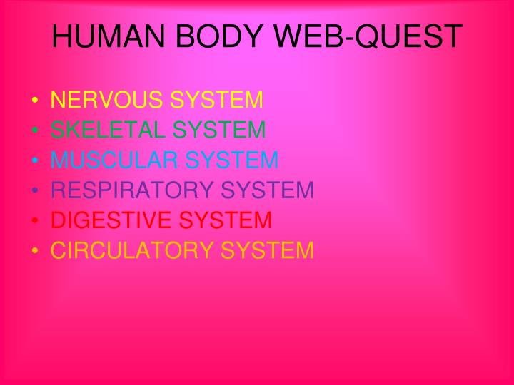 Human body web quest