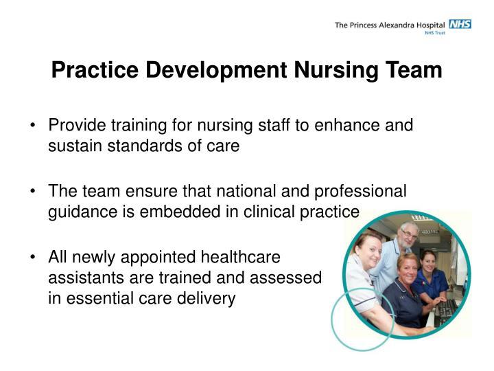 Practice Development Nursing Team