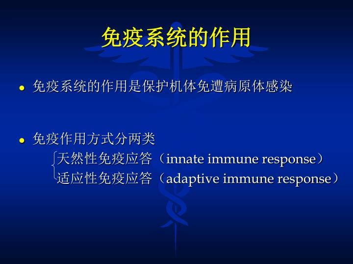 免疫系统的作用